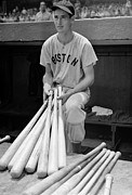 Baseball Bat Photo Prints - Ted Williams Print by Sanely Great