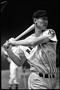 Boston Red Sox Metal Prints - Ted Williams Poster Metal Print by Sanely Great