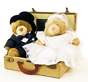 Suitcase Framed Prints - Teddy Bear Honeymoon Framed Print by Edward Fielding