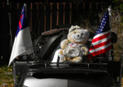 American Flags Prints - Teddy Bear Ridin On Print by Christine Till