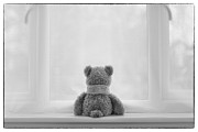 Teddybear Framed Prints - Teddy Bear Waiting Framed Print by Natalie Kinnear