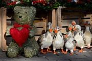 Teddy Bear With Flock Of Stuffed Ducks Print by Imran Ahmed