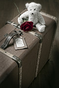 Suitcase Framed Prints - Teddy Wants To Travel Framed Print by Joana Kruse
