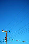 Powerlines Framed Prints - Telegraph pole Framed Print by Antony McAulay