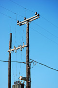 Powerlines Framed Prints - Telegraph poles Framed Print by Antony McAulay