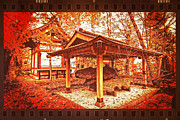 Film Look Prints - Temple Among Vivid Autumn Leaves Print by Beverly Claire Kaiya
