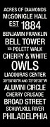 Cherry Art Posters - Temple Colege Town Wall Art Poster by Replay Photos