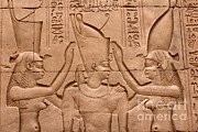 Temple Of Horus Relief Print by Stephen & Donna O'Meara