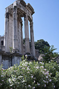 Historic Photos Art - Temple of Vesta by Melany Sarafis