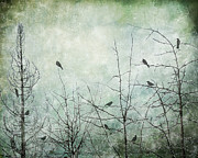 Stark Digital Art Posters - Ten Birds Poster by Karen  Burns