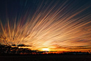 Matt Molloy Prints - Ten Thousand Paths Print by Matt Molloy