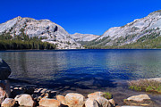 Tom Hard - Tenaya Lake