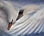 Swans... Pastels Prints - Tenderness Print by Debra Wilson