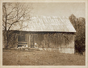 Tennessee Barn Digital Art Posters - Tennessee Farm Vintage Barn Poster by Phil Perkins