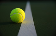 David Lee - Tennis Ball at Last Light