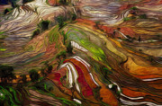 Rice Digital Art Prints - Terraced Hillside Print by Jack Zulli