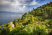 Portofino Italy Prints - Terraced Hillside of Portofino Print by George Oze