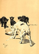Dog Print Pastels Framed Prints - Terrier Drinking the Kittens Milk - A Dog Day Collection 3 of 27 Framed Print by Cecil Aldin
