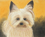 Animals Pastels Originals - Terrier by Jeanne Fischer