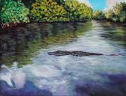 Alligator Paintings - Territorial by Eve  Wheeler