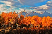 Natural Scenery. Prints - Teton Autumn Print by Benjamin Yeager