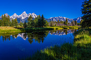 Pine Tree Posters - Teton Reflection Poster by Chad Dutson
