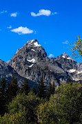 Teton View Print by Robert Bales