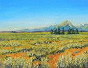 Todd Derr - Tetons From The Valley...