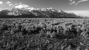 Edward R Wisell - Tetons in Black and White