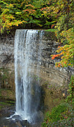 Spencer Prints - Tews Falls in Autumn Print by Barbara McMahon