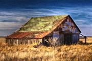Shed Digital Art - Texas Barn 1 by DS Dodd