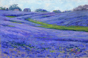 Texas Pastels Originals - Texas Blue by Billie Colson