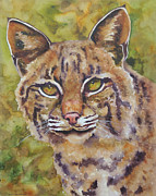Bobcat Paintings - Texas Bobcat by Robin Hegemier