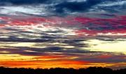 David  Norman - Texas Good Morning