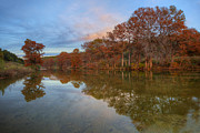 Photos Of Autumn Prints - Texas Hill Country Images - Pedernales Falls State Park Autumn S Print by Rob Greebon