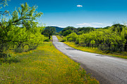 Hill Prints - Texas Hill Country Road Print by Darryl Dalton