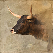 Texas Longhorn Cow Prints - Texas Longhorn # 3 Print by Betty LaRue