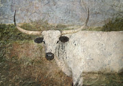 Texas Longhorn Photos - Texas Longhorn #1 by Betty LaRue