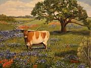 Bulls Painting Originals - Texas Longhorn by Martha Kemp