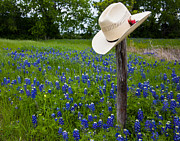 Texas Print by Mark Alder