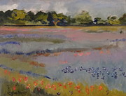 Caron Sue Staney - Texas Wildflower Field