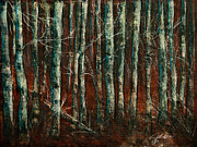 Shades Of Red Mixed Media Framed Prints - Textured Birch Forest Framed Print by Jani Freimann