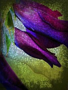 Textured Gladiola Buds Print by Shirley Sirois