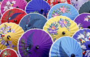 No People Posters - Thailand. Chiang Mai Region. Umbrellas Poster by Anonymous