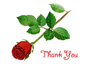 Bedroom Wall Art Posters - Thank You Card Red Rose Poster by Irina Sztukowski