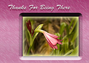Thank You Card Prints - Thanks For Being There Print by Carolyn Marshall
