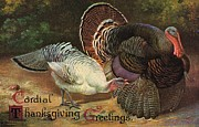 Turkey Painting Metal Prints - Thanksgiving Greetings Metal Print by American School