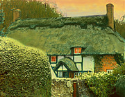 Maureen Tillman - Thatched Cottage at...