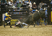 Bull Riders Photos - Thats Gotta Hurt by Don Olea