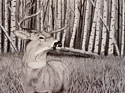 Elk Mixed Media - The 15 by Nicole Grev